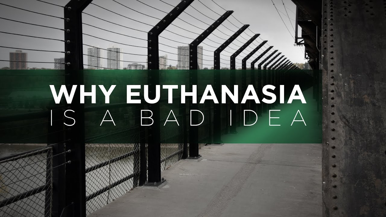 why euthanasia is a bad thing Or if i had a bad disease i wouldn't want anyone -not my wife i believe euthanasia is the right thing to do to counter-balance the unnatural world that pet dogs.