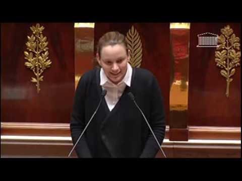 Intervention d'Axelle Lemaire lors du débat sur le numérique en hémicycle - 30 janvier 2014
