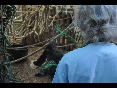 Virginia McKenna visits London Zoo