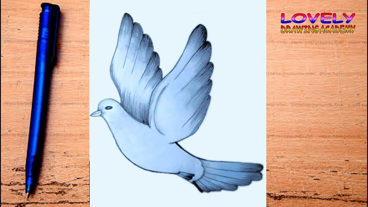 How To Draw A Flying Bird Tutorial For Beginner Birds Drawing Very Easy Lovely Drawing Academy Youtube