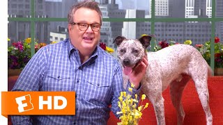 My Pet Stories with Patton Oswalt and Eric Stonestreet | The Secret Life of Pets 2 Interview