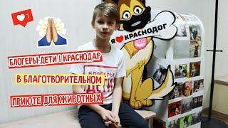 Блогеры Дети Краснодар в приюте для животных