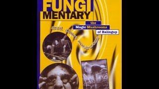 The Magic mushrooms of Balingup FUNGIMENTARY (Full Length).