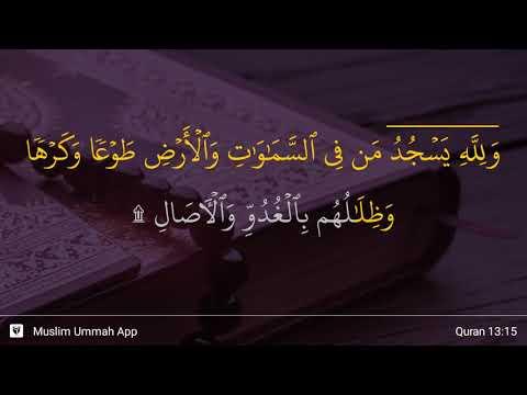 Ar-Ra'd ayat 15