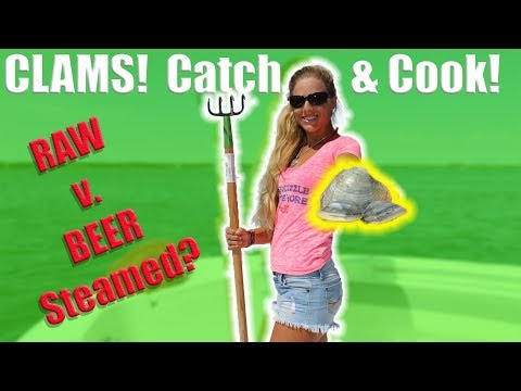 RAW CLAMS v. STEAMED IN BEER Challenge! Catch Clean Cook