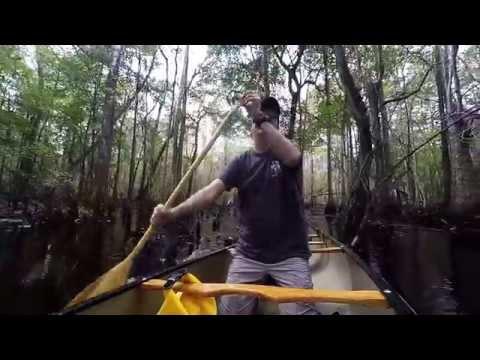 Lumber River canoe trip