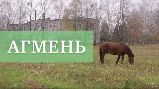 АГМЕНЬ   Документальный фильм   Бел. яз.