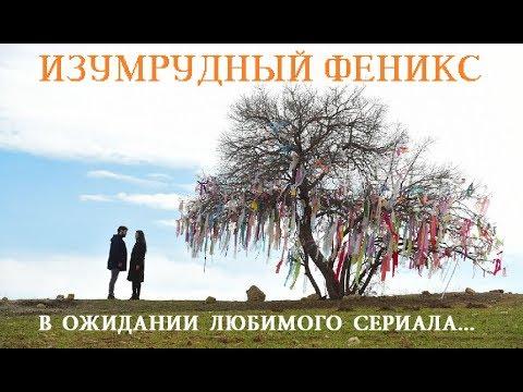 ПТИЦА ФЕНИКС/10 СЕРИЯ/ТУРЕЦКИЙ СЕРИАЛ/РУССКАЯ ОЗВУЧКА/ДАТА ВЫХОДА