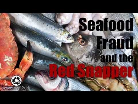 Fish Fraud And The Red Snapper