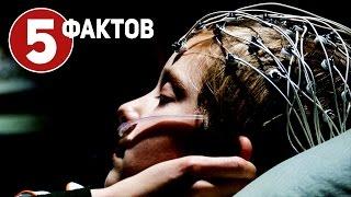 Девятая жизнь Луи Дракса - ТОП 5 фактов о фильме (2016) Жуткий триллер