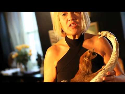 MY KIND OF APARTMENT - THE BLACK APARTMENT - CINDY GALLOP