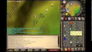 Best Cannon Exp for Runescape 07