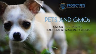 PROTECT OUR PETS FROM GMOs AND PESTICIDES thumbnail