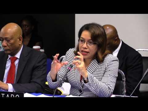 Guyana: Situación DESC