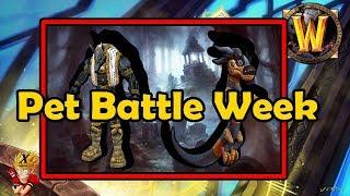 BfA Beta Now Live, Pet Battle Week - Bite Sized WoW News