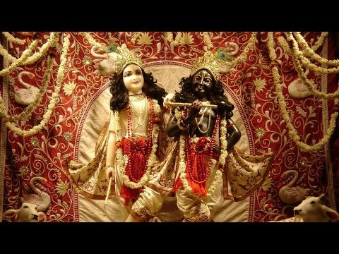ISKCON Vrindavan Mangala Arati | Vibhavari Shesha | must watch |