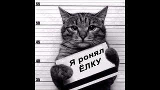 Кошки против новогодних елок!!! Просто смех!!! ))