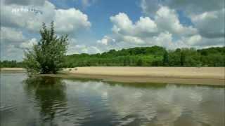 Chillout Nature - Chambord et Val de Loire, faune, flore, châteaux
