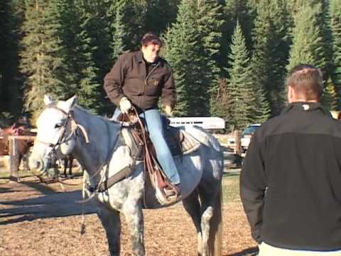 Have an unforgettable dude ranch vacation at the Bar W Guest Ranch
