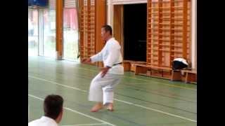 Kagawa-sensei demonstrates unsoku for the stance kokutsu-dachi