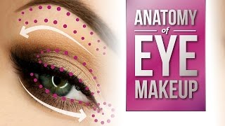 Anatomy of Eye Makeup | Pretty Smart