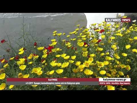 6-5-2019 Όμορφες λουλουδιασμένες εικόνες από την Καλύμνικη φύση
