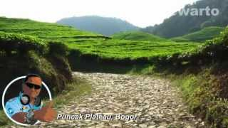 Cianjur Tea Plantation (Disco Remix Song)