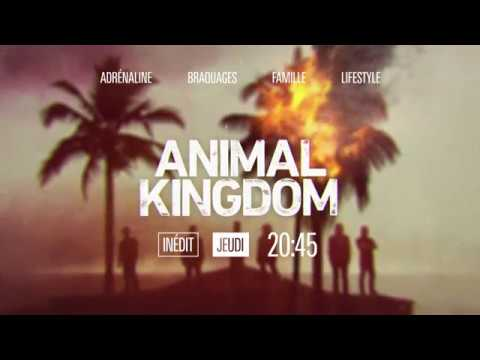 Animal Kingdom │ résumé S01E07/08 │Warner TV France