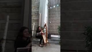 Su ali d'aquila - VoceDAnimA - Elisa Malatesti (live wedding) - voce e arpa celtica