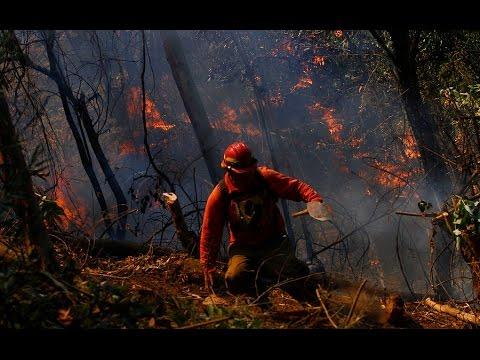 37 incendio activos afectan la zona centro sur de Chile - CHV NOTICIAS