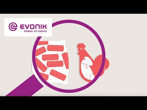 Best quality for your business - MetAMINO® | Evonik Animal Nutrition