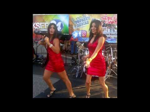 The Valley Cats Band - FUN LIVE Party (COVER) Band Show September 2016 at a Public Event!!!