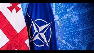 Грузия выбирает NATO и озабоченность Григория Карасина Пограничная ZONA Автор Егор Куроптев