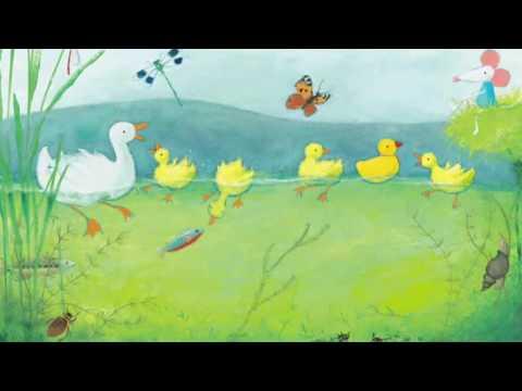 alle eendjes zwemmen in het water remix kinderliedjes