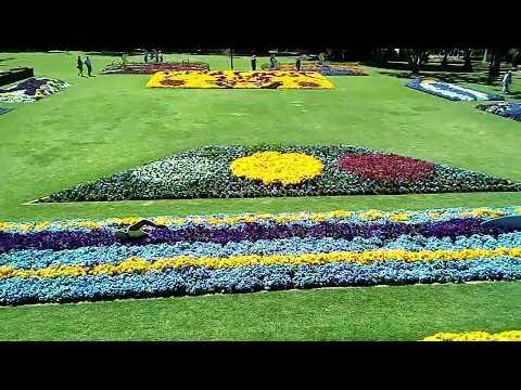 Toowoomba Carnival of Flowers Laurel Bank Park - 21 SEPT 2018