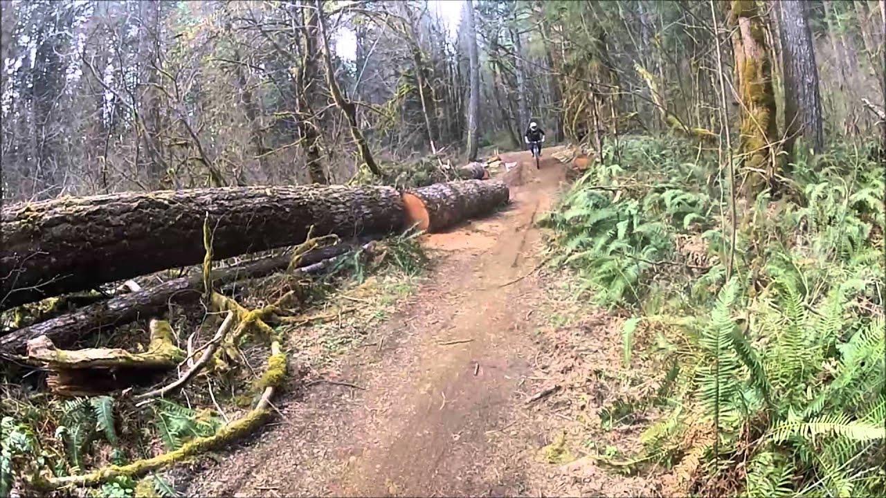 Blackrock Mountain Bike Park Banzai Downhill Youtube