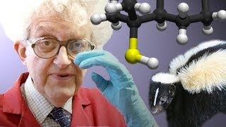 Smelly Chemistry - Periodic Table of Videos