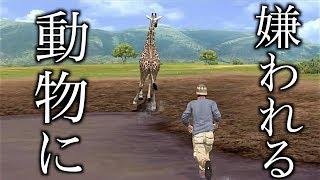 ちょっとアフリカに行って動物の写真撮ってくる