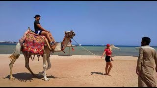 MAKADI BAY - STELLA BEACH RESORT & SPA (Egypt)
