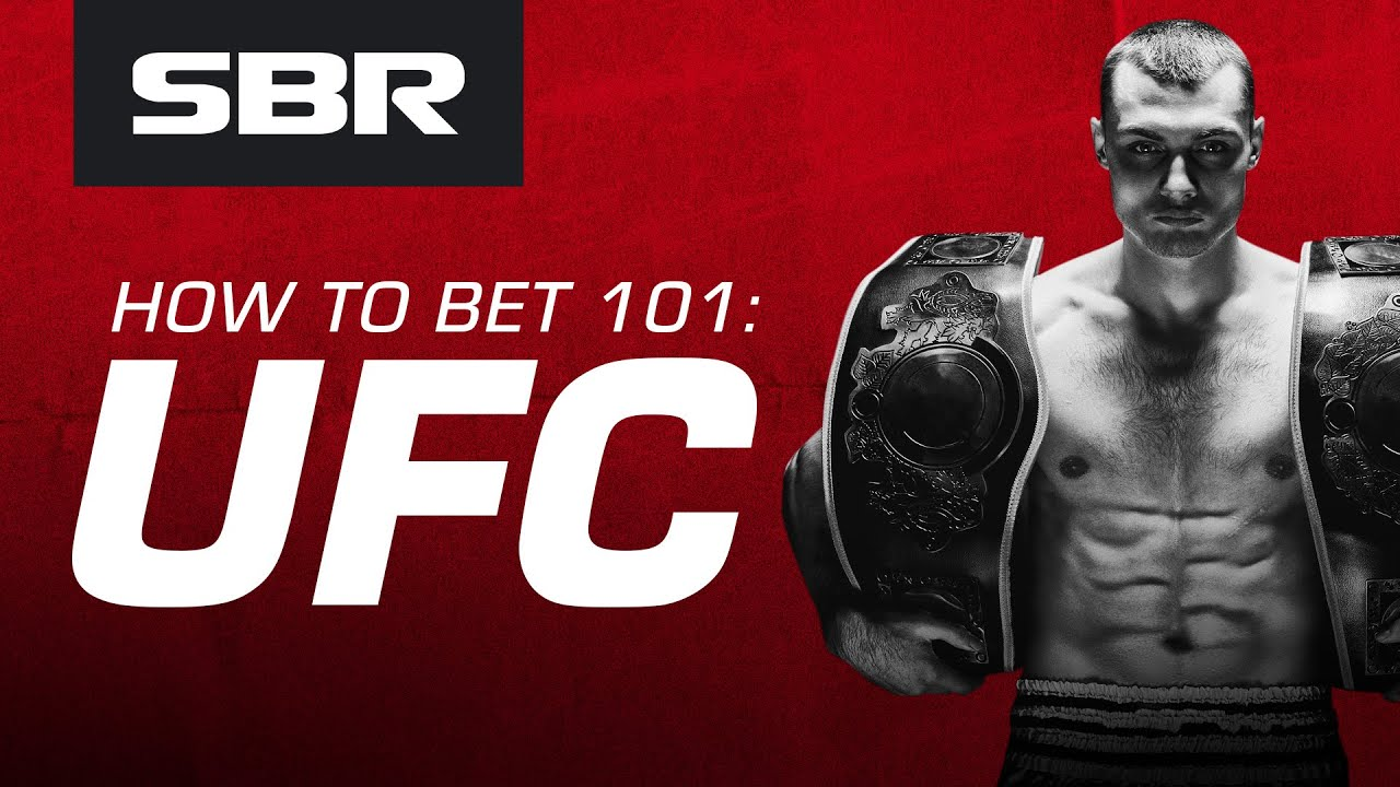 Sbr betting forum mma hat federal election betting