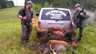 Hog Hunting - Great Southern Outdoors, Union Springs AL
