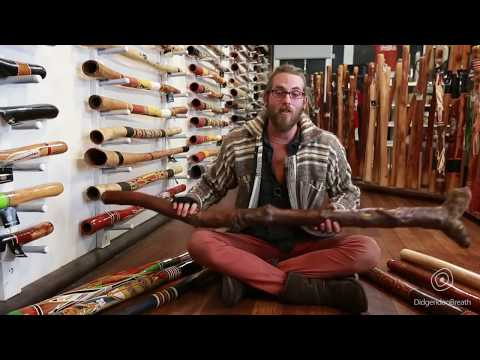 Didgeridoo Buyers Guide - Buying A Didgeridoo For The Advanced Player - 10 Of 10