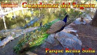 Испания, Guardamar del Segura, часть 1 Парк Королевы Софии, Parque Reina Sofia(Видео Путешествия по Испании Коста Бланка, Guardamar del Segura Парк Королевы Софии, Parque Reina Sofia - птицы, павлины,..., 2016-02-04T10:35:52.000Z)