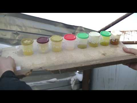 Тест масла стоек и амортизаторов на замерзание -30 градусов