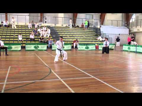 Russia Kata Championship 2014:  Absolute Category