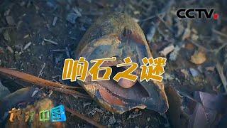 《地理·中国》 20210111 不可思议的石头·响石之谜| CCTV科教 - YouTube