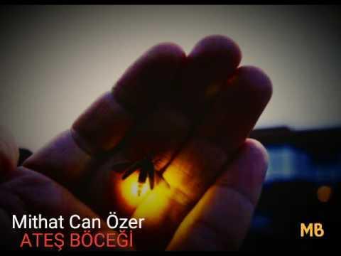 Mithat Can Özer Ateş böceği