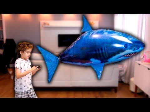 Brincando com Balão Tubarão de Controle Remoto - Paulinho e Toquinho