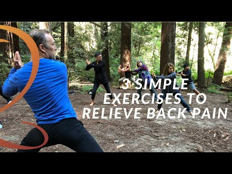 3 Easy Exercises to Relieve Back Pain Naturally Get Natural Back Pain Relief