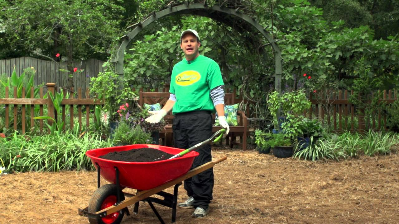 Best way to plant grass seed - Best Way To Plant Grass Seed 51